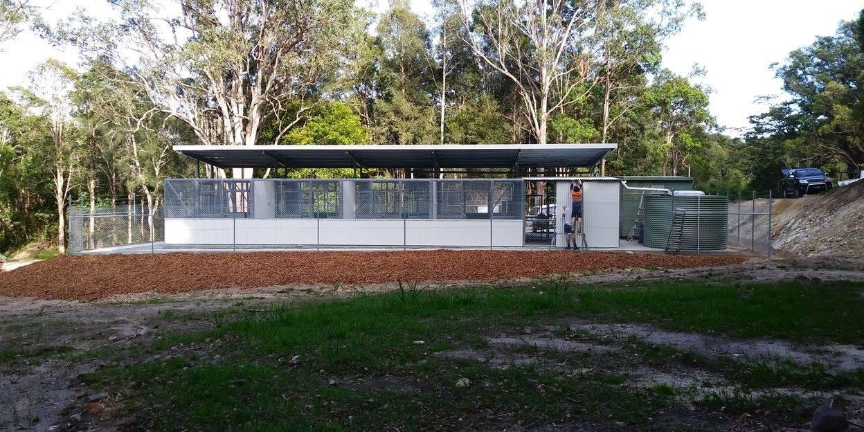 Tweed Coast Koala Research Hub